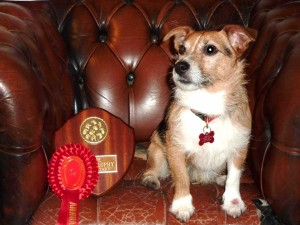 George with his Annual Comps shield and rosette 2010